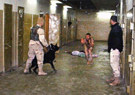 abughraib_dog_torture_430,0.jpg