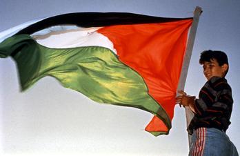 palestineflagboy.jpg